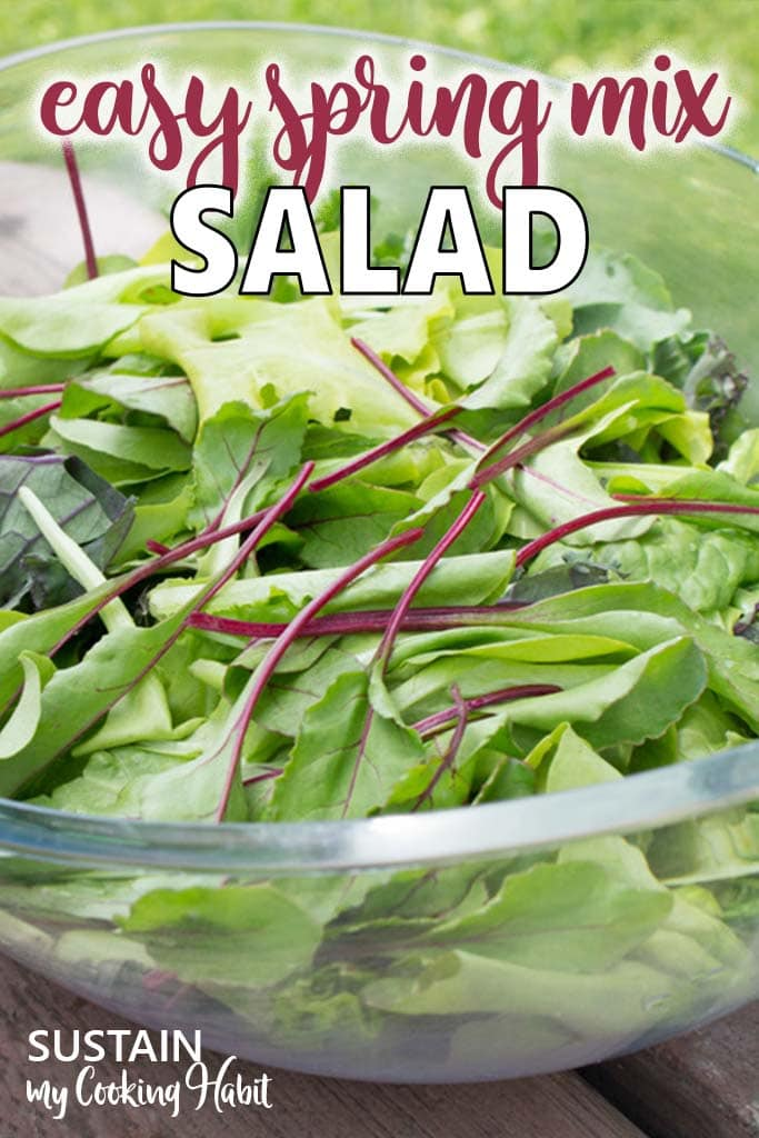 Close up image of a spring mix salad consisting of leafy greens