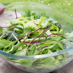 Spring leaf salad with beet leaves and lettuce