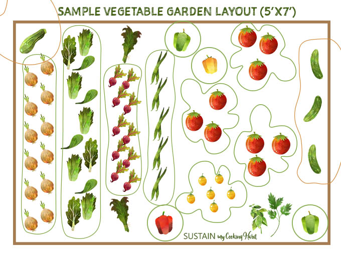 Sketch of a sample vegetable garden layout