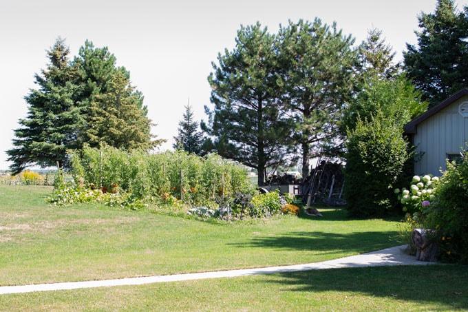 Planning Your Backyard Garden Sustain My Cooking Habit