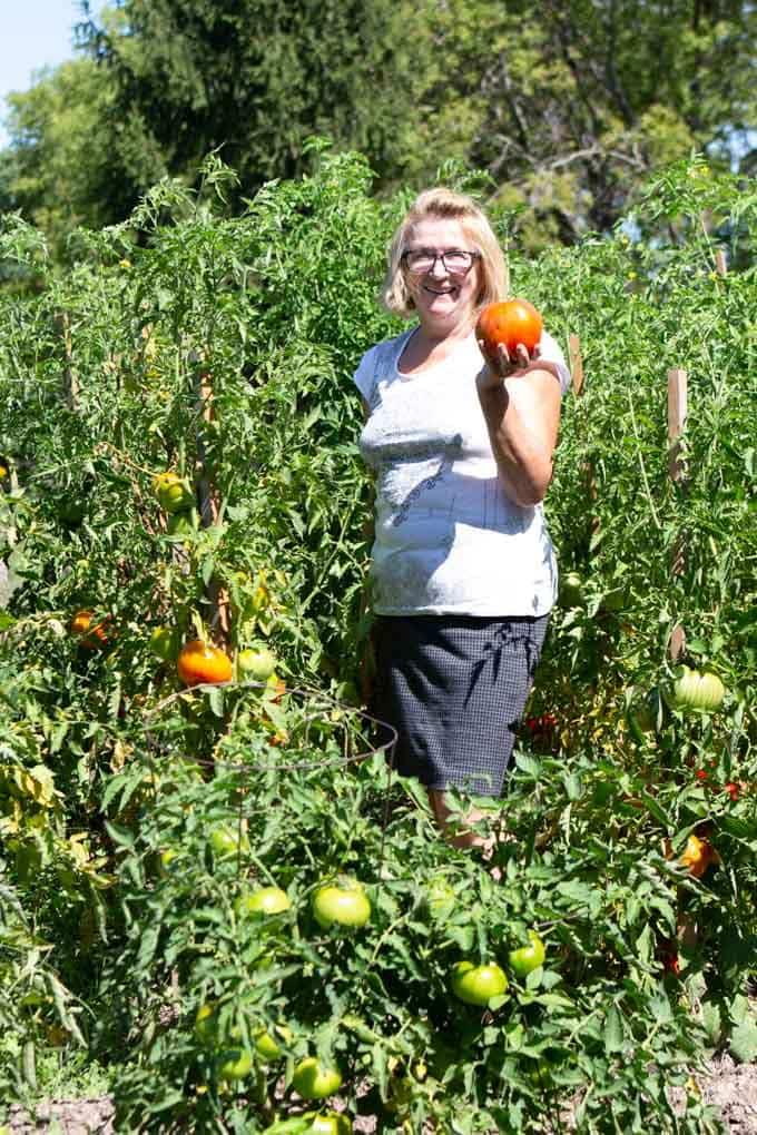 Beginner Gardening Series Part 2 Supplies Needed For A Backyard