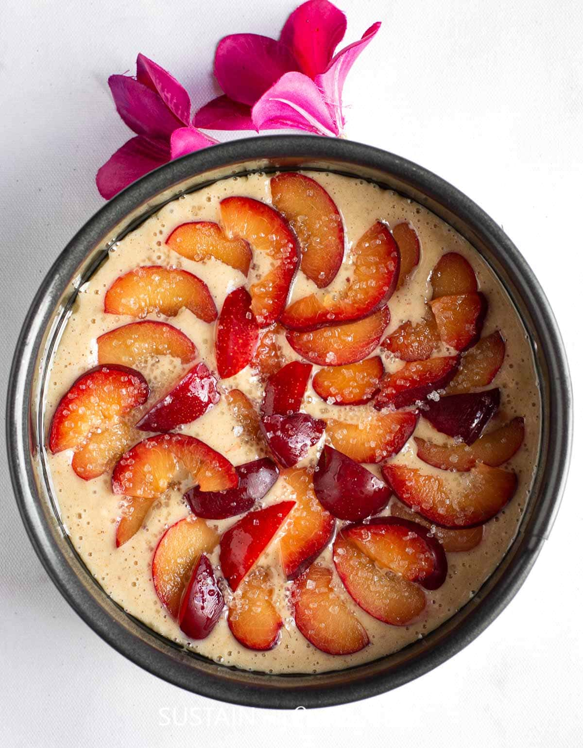 Poured plum cake batter in a baking pan and fresh cut plums arranged on top.