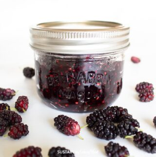 jar full of mulberry jam surrounded by fresh mullberies
